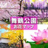 福岡「舞鶴公園」は桜だけじゃない!公園内で楽しめる花の見頃と場所