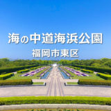 【福岡市東区】海の中道海浜公園の遊具とじゃぶじゃぶ池が楽しい公園。動物とも触れ合える