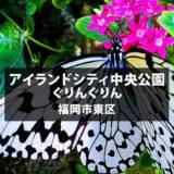 アイランドシティ中央公園【ぐりんぐりん】ならオオゴマダラが一年中見られる!