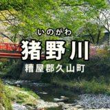 【久山町】福岡近郊で川遊びなら猪野川がおすすめ!小魚もいて子どもが喜ぶ!