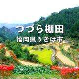 うきは市の彼岸花「つづら棚田」子どもに見せたい古き良き日本の風景