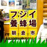 「藤井のはちみつ」おいしい国産はちみつと資料館・工場見学ができる楽しいお店