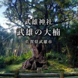【佐賀】武雄の大楠 武雄神社に眠る樹齢3000年のいにしえの巨木