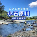 朝倉で川遊び 絶滅危惧種ゲンゴロウの住む「小石原川」小魚もたくさん
