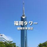 【福岡タワー】夜景100選!福岡の海・山・街・島を一望できる大パノラマ!一般へのイルミネーションサービスも