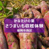 福岡市内でさつまいも収穫体験『かなたけの里』2021年の応募締切間近