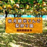 福岡で梨狩り!大きくて甘い『秋月観光りんご・梨狩園』